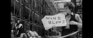 dylanwindblows
